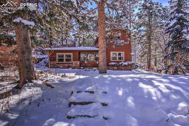 8122 W Highway 24 Highway, Cascade, CO 80809 (#9752690) :: CC Signature Group