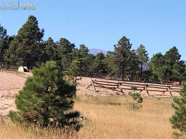 5550 Old Stagecoach Road, Colorado Springs, CO 80908 (#9753398) :: Action Team Realty