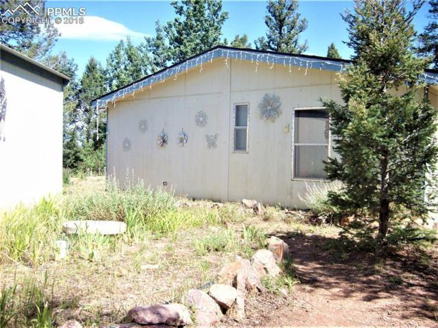 433 Bennett Drive, Cripple Creek, CO 80813 (#9755149) :: 8z Real Estate