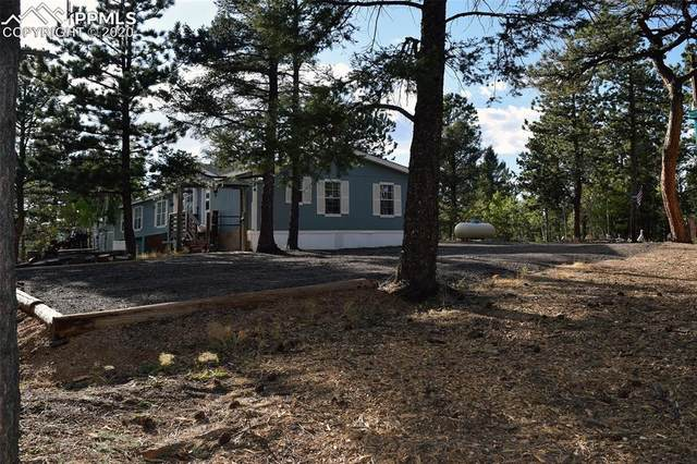 24 Spruce Creek Road, Divide, CO 80814 (#9758991) :: Compass Colorado Realty