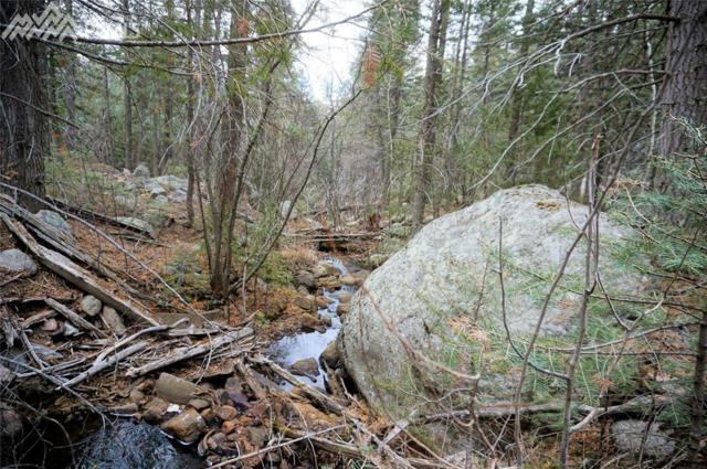 4852 Little Turkey Creek Road, Colorado Springs, CO 80926 (#9762502) :: Group 46:10 Colorado Springs
