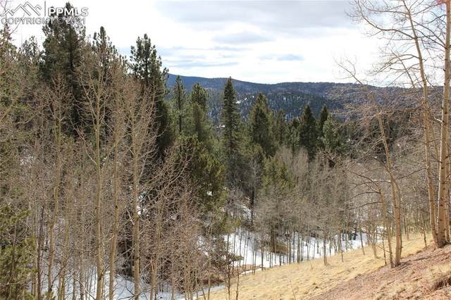 421 Calcite Drive, Divide, CO 80814 (#9763629) :: Venterra Real Estate LLC