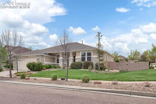 10211 Murmuring Pine Court, Colorado Springs, CO 80920 (#9771152) :: The Daniels Team