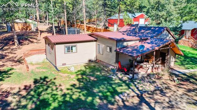 1018 Spruce Ridge Lane, Woodland Park, CO 80863 (#9771894) :: Finch & Gable Real Estate Co.