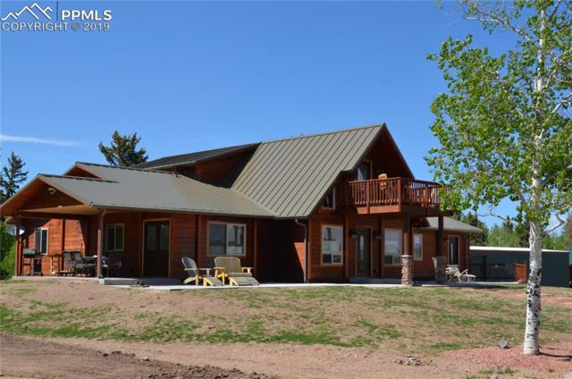 10257 W Highway 24 Highway, Divide, CO 80814 (#9773580) :: Perfect Properties powered by HomeTrackR