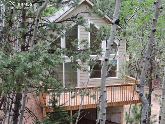 263 Wakanda Trail, Woodland Park, CO 80863 (#9776934) :: Harling Real Estate
