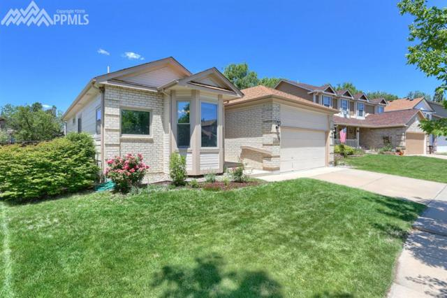 7808 French Road, Colorado Springs, CO 80920 (#9777172) :: Jason Daniels & Associates at RE/MAX Millennium