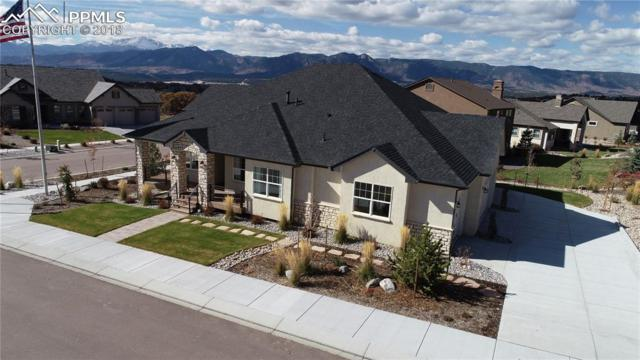 13610 Kitty Joe Court, Colorado Springs, CO 80921 (#9780848) :: Harling Real Estate