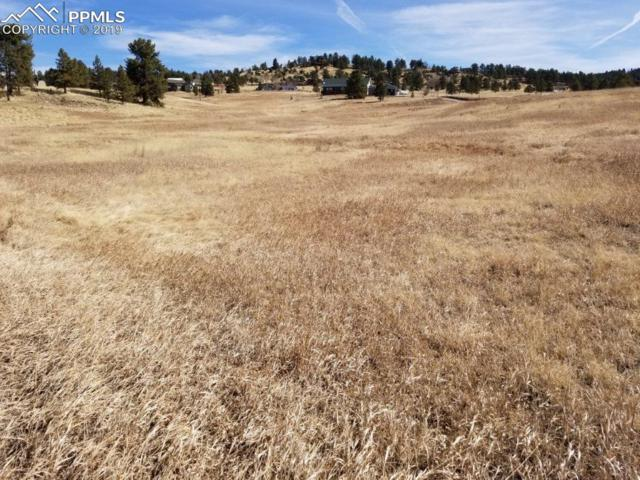 714 Empire Road, Florissant, CO 80816 (#9781700) :: Jason Daniels & Associates at RE/MAX Millennium