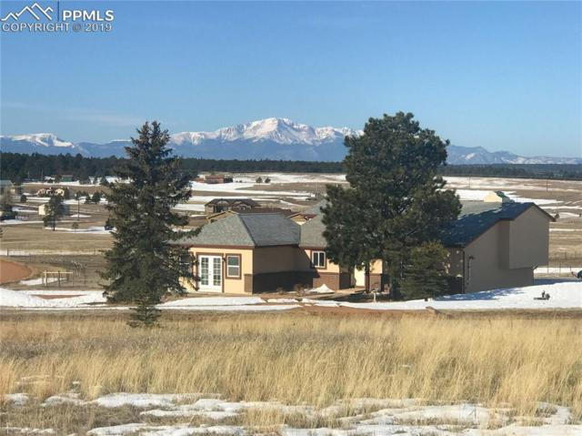 17090 Forest Green Way, Elbert, CO 80106 (#9783575) :: Action Team Realty