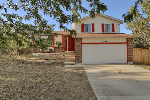 2634 Deliverance Drive, Colorado Springs, CO 80918 (#9783813) :: Tommy Daly Home Team