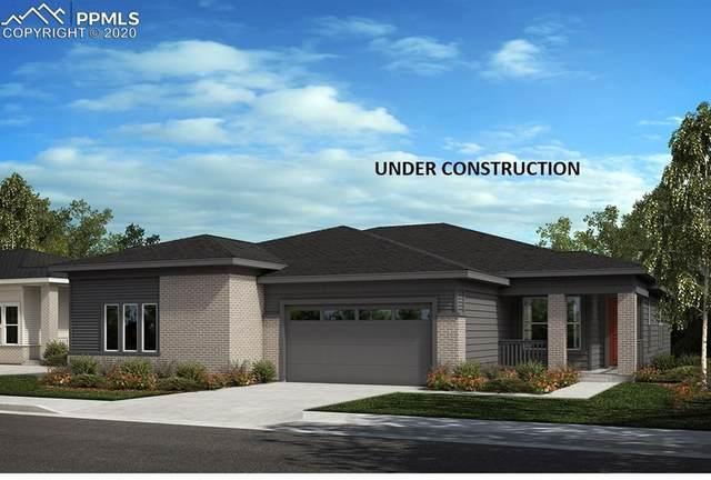 4538 Hidden Gulch Road, Castle Rock, CO 80104 (#9784348) :: Finch & Gable Real Estate Co.