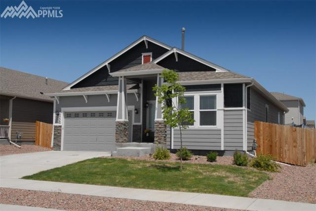 6559 Wexford Drive, Colorado Springs, CO 80923 (#9786398) :: Action Team Realty