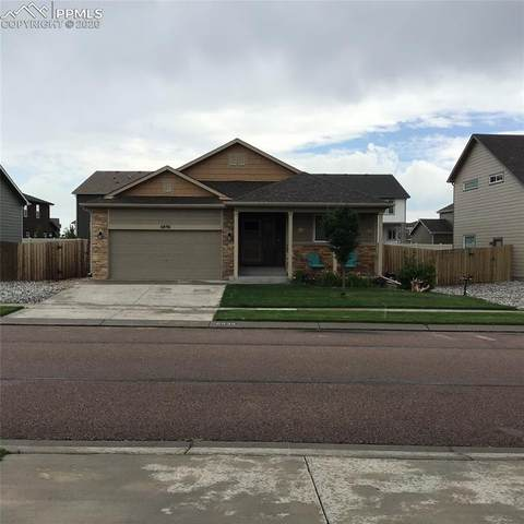 6896 Red Cardinal Loop, Colorado Springs, CO 80908 (#9788184) :: Tommy Daly Home Team