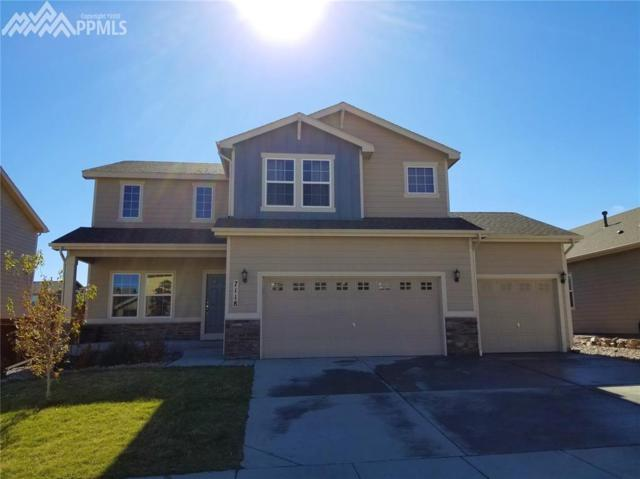 7118 Red Cardinal Loop, Colorado Springs, CO 80908 (#9788296) :: 8z Real Estate