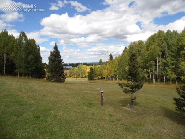 55 Shallow Creek Road, Woodland Park, CO 80863 (#9790668) :: 8z Real Estate