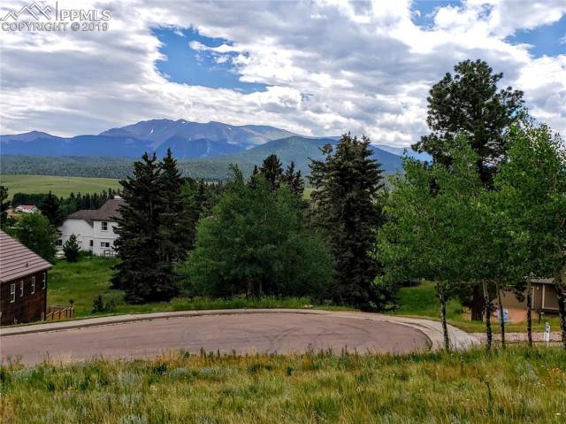 110 Allison Place, Divide, CO 80814 (#9792304) :: Action Team Realty