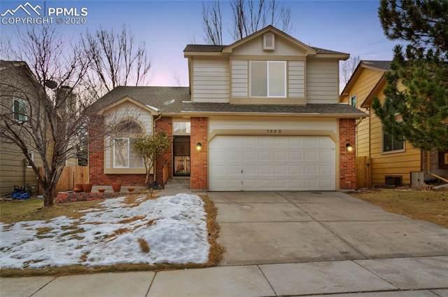 7095 Native Circle, Colorado Springs, CO 80919 (#9794981) :: 8z Real Estate