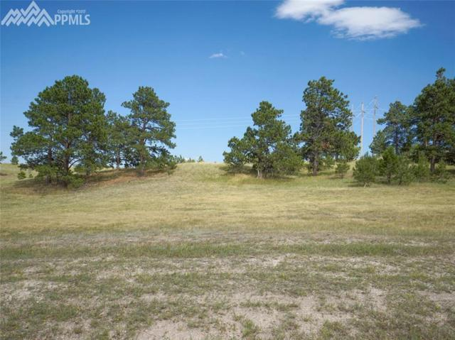 19053 Malmsbury Court, Monument, CO 80132 (#9796260) :: 8z Real Estate