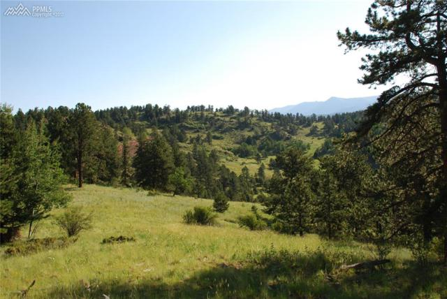 TBD County 1 Road, Cripple Creek, CO 80813 (#9797876) :: 8z Real Estate