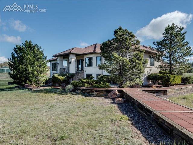 14905 Crooked Spur Lane, Colorado Springs, CO 80921 (#9802144) :: 8z Real Estate