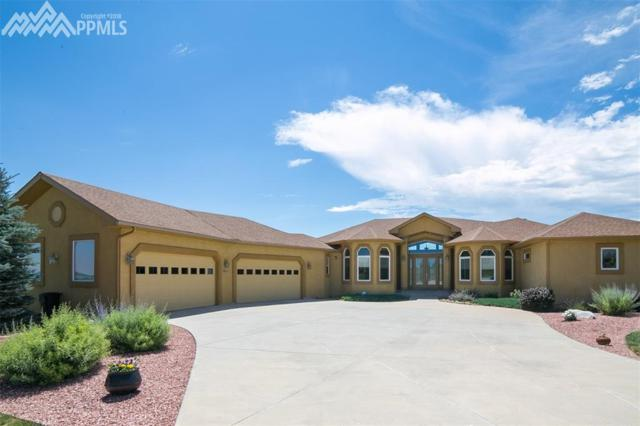 1853 Penny Royal Court, Monument, CO 80132 (#9808019) :: 8z Real Estate