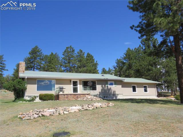 2197 County 46 Road, Florissant, CO 80816 (#9809325) :: The Peak Properties Group