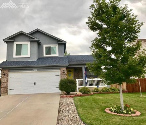 1450 S Canoe Creek Drive, Colorado Springs, CO 80906 (#9811049) :: 8z Real Estate