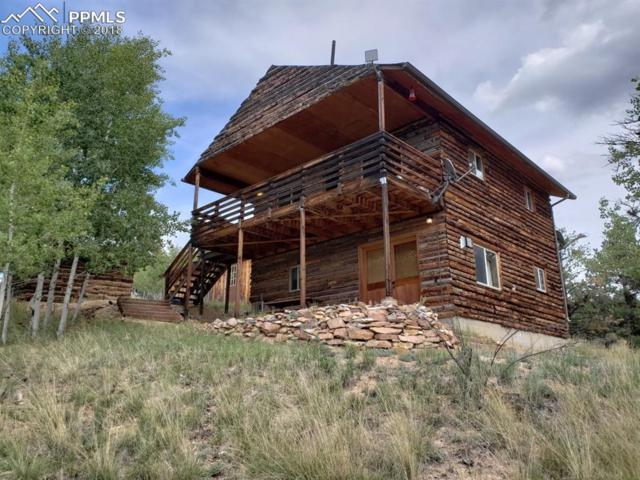 314 Shavano Creek Trail, Florissant, CO 80816 (#9811346) :: The Hunstiger Team