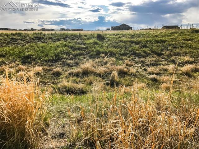 12050 Silver Concho Trail, Elbert, CO 80106 (#9811925) :: Action Team Realty
