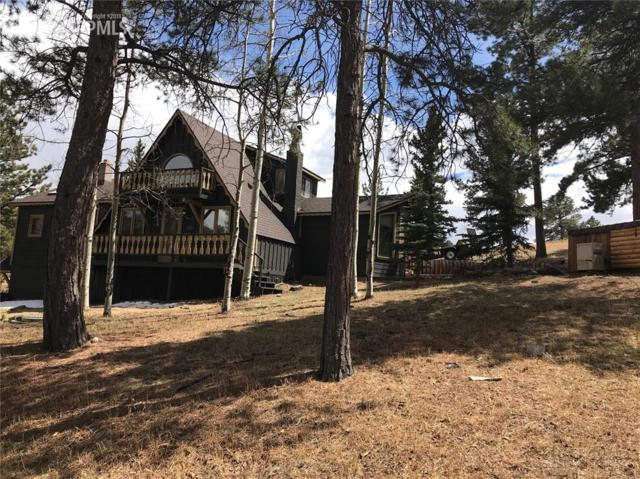 845 Markus Road, Woodland Park, CO 80863 (#9813199) :: Action Team Realty