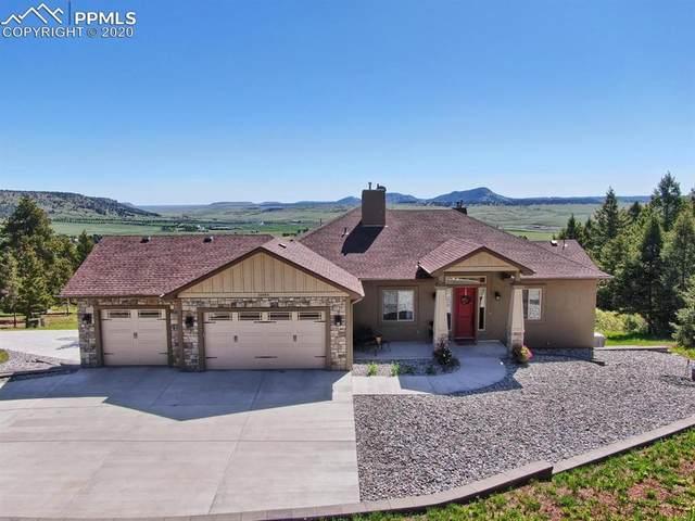 15365 Sierra Pines Lane, Larkspur, CO 80118 (#9813332) :: 8z Real Estate