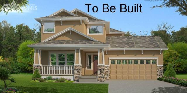 1738 Willow Park Way, Monument, CO 80132 (#9816815) :: 8z Real Estate