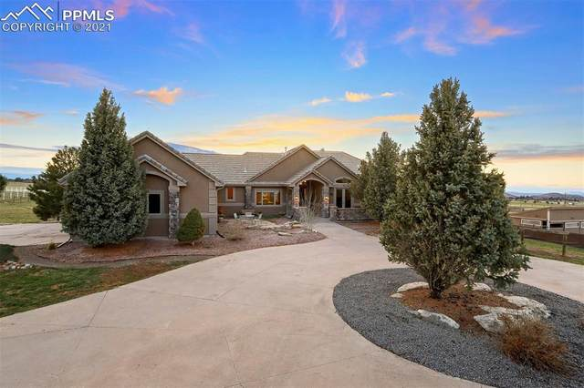 5219 Stone Canon Ranch Road, Castle Rock, CO 80104 (#9818481) :: The Daniels Team