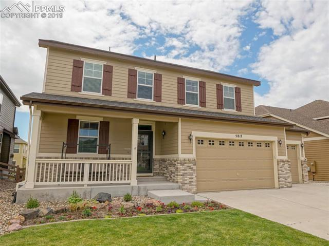5817 Leon Young Drive, Colorado Springs, CO 80924 (#9824601) :: CC Signature Group