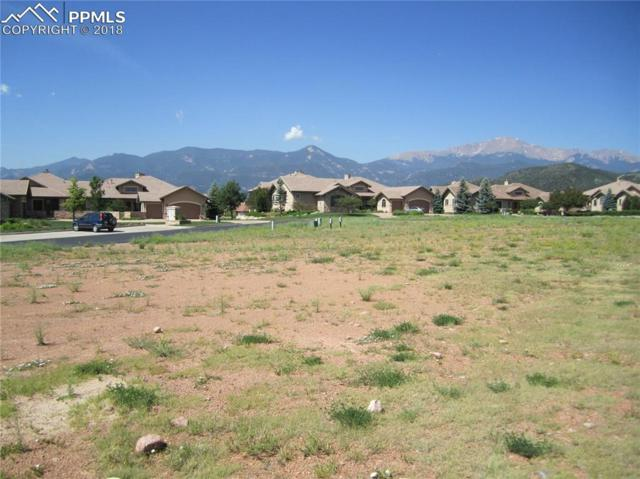 4095 Reserve Point, Colorado Springs, CO 80904 (#9829299) :: CC Signature Group