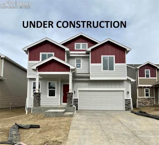 9960 Castor Drive, Colorado Springs, CO 80925 (#9829629) :: Fisk Team, RE/MAX Properties, Inc.