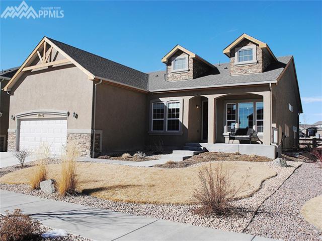 5704 Leon Young Drive, Colorado Springs, CO 80924 (#9830504) :: 8z Real Estate