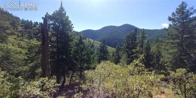 0 Upper Sun Valley Road, Manitou Springs, CO 80829 (#9830796) :: Colorado Home Finder Realty