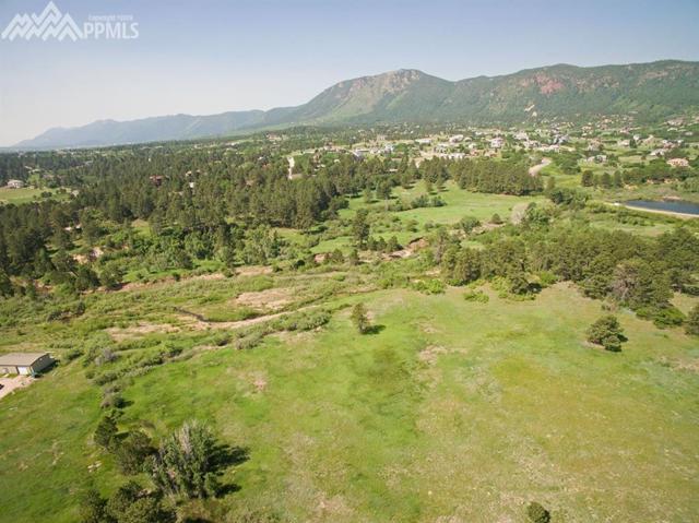 Rockbrook Road, Palmer Lake, CO 80132 (#9830996) :: 8z Real Estate