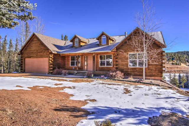 1660 Spring Valley Drive, Divide, CO 80814 (#9835936) :: The Daniels Team