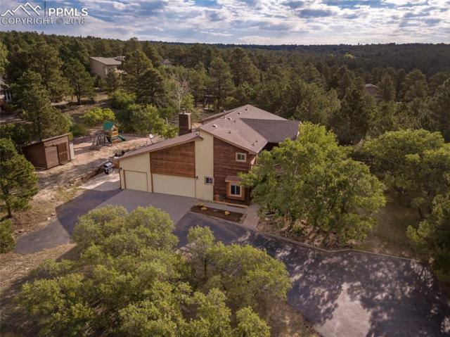 1673 Woodmoor Drive, Monument, CO 80132 (#9835974) :: The Daniels Team