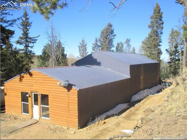2254 County 28 Road, Woodland Park, CO 80863 (#9838135) :: 8z Real Estate