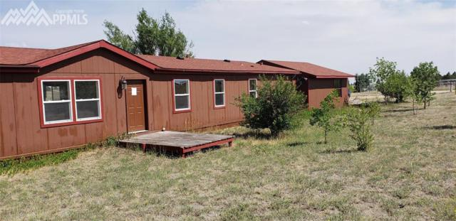 13395 Painted Horse Place, Calhan, CO 80808 (#9850350) :: Jason Daniels & Associates at RE/MAX Millennium