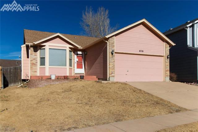 6716 Sleeping Giant Drive, Colorado Springs, CO 80923 (#9852420) :: 8z Real Estate
