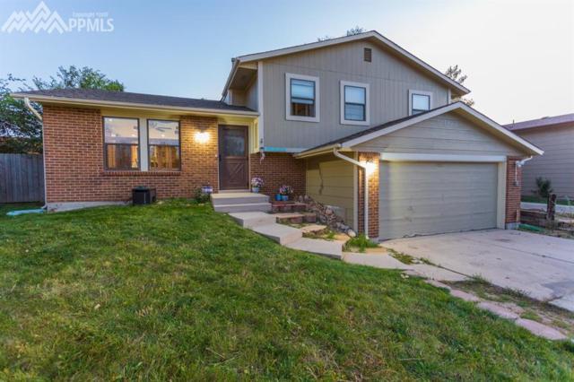 3673 Summer Breeze Drive, Colorado Springs, CO 80918 (#9856127) :: RE/MAX Advantage