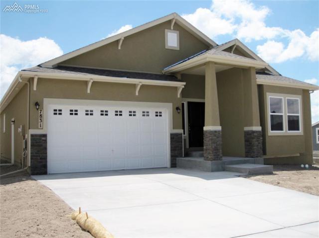 7831 Barraport Drive, Colorado Springs, CO 80908 (#9858316) :: Action Team Realty
