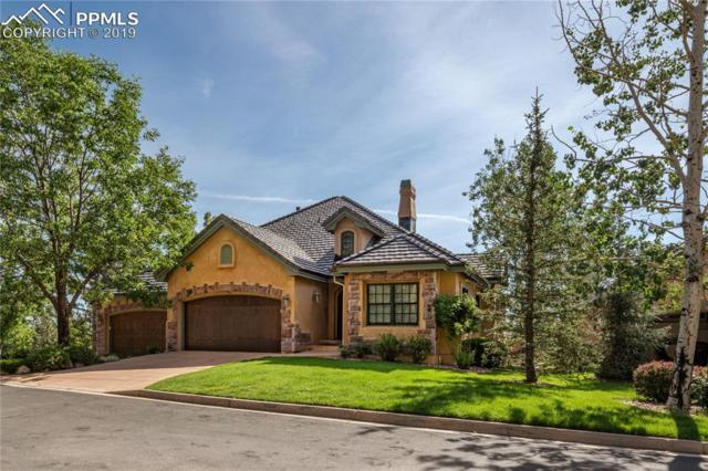 1270 Log Hollow Point, Colorado Springs, CO 80906 (#9859714) :: CC Signature Group