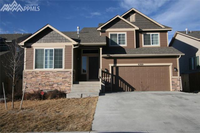 6260 Marilee Way, Colorado Springs, CO 80911 (#9867307) :: 8z Real Estate