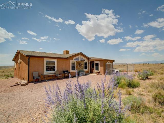 21110 Camino Reposado Point, Fountain, CO 80817 (#9869245) :: The Dunfee Group - Keller Williams Partners Realty